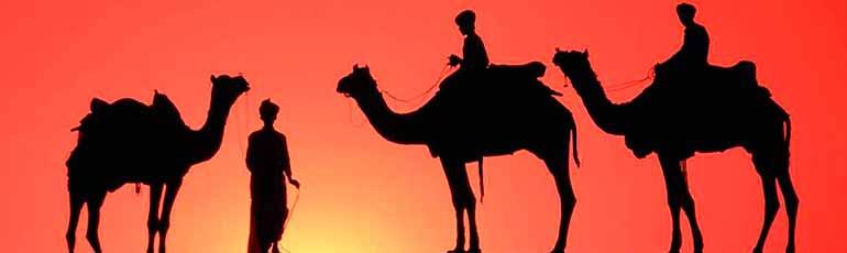 Recorrido en el desierto con cena barbacoa