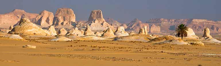 Safari a Egipto Desierto Blanco