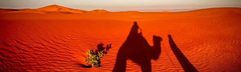 Sahara Ibermundo Safari Marruecos El En Travel qR4LcA35jS