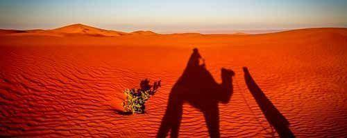Safari en el Sahara Marruecos