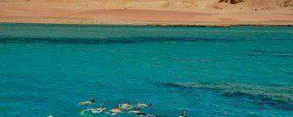 Snorkel en el Parque Nacional de Ras Mohamed